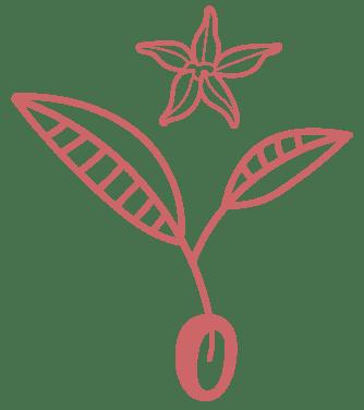 Logo movil árbol de cacao